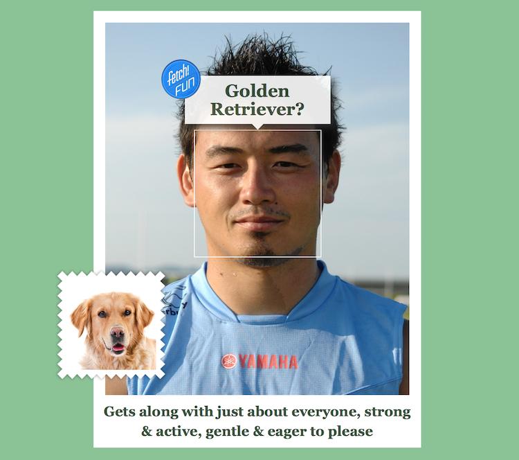 五郎丸選手/犬顔