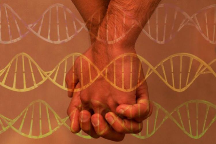 ゲイの遺伝子