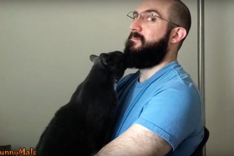 ヒゲ男子と猫